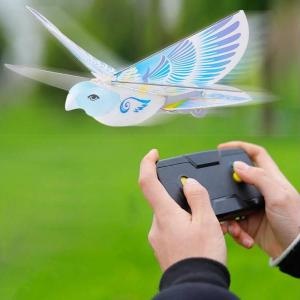 rc swallow bird