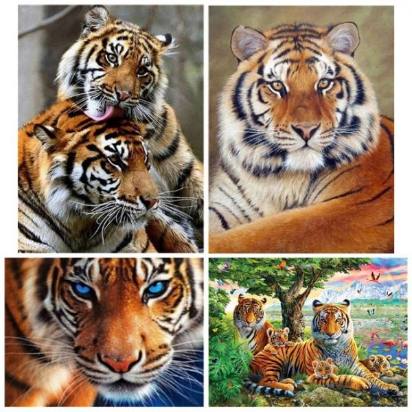 Painting with diamonds in 5d tigers