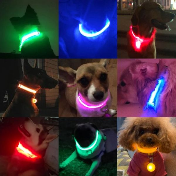 Led Dog Collar Anti-Lost Charged by USB in various colours