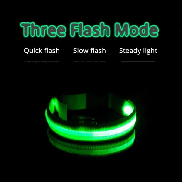 Led Dog Collar Anti-Lost Charged by USB with 3 flashing modes