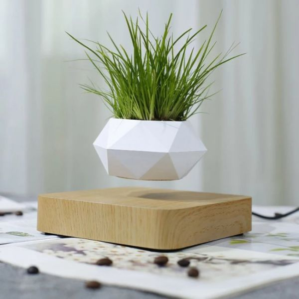 Magnetic floating Bonsai plant with pot