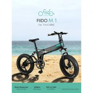 Fiido M1 electric bike with big tires and high mileage