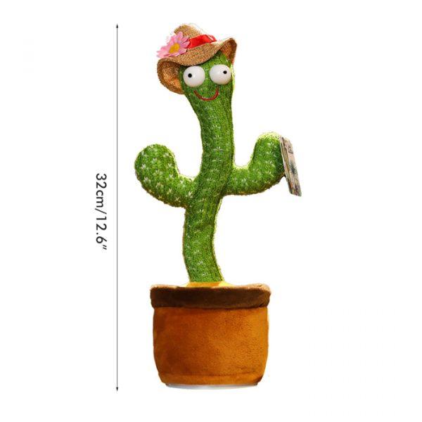 dimensions of talking and dancing cactus